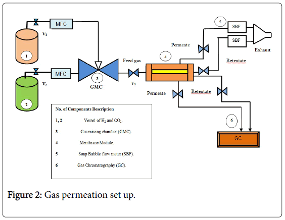 membrane-science-technology-Gas-permeation-set-up