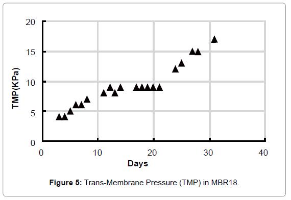 membrane-science-technology-Trans-Membrane-Pressure