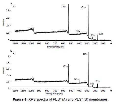 membrane-science-technology-XPS-spectra-PES