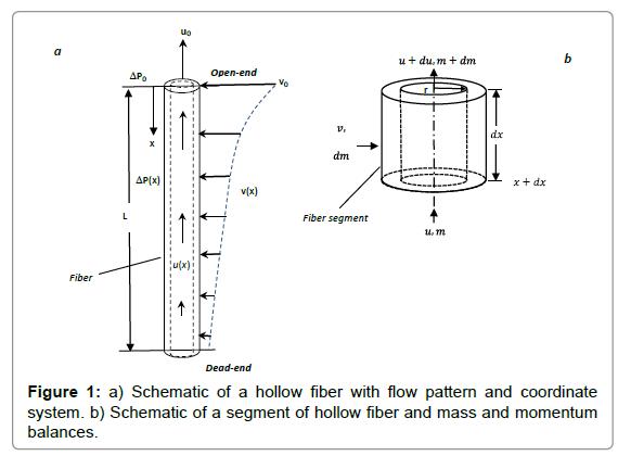 membrane-science-technology-hollow-fiber-flow