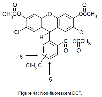 metabolomics-Non-fluorescent-DCF