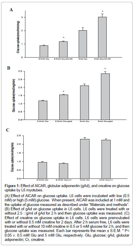 metabolomics-globular-adiponectin