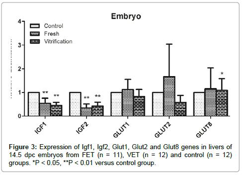 metabolomics-livers-embryos