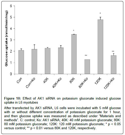 metabolomics-potassium-gluconate