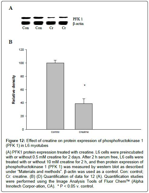 metabolomics-protein-expression