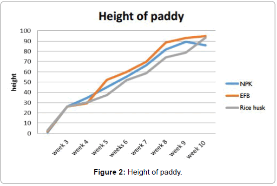 microbial-biochemical-technology-Height-paddy