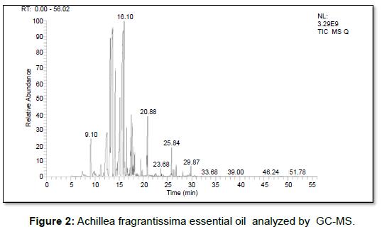 microbial-biochemical-technology-achillea-fragrantissima-oil
