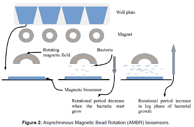 microbial-biochemical-technology-asynchronous-magnetic-biosensors