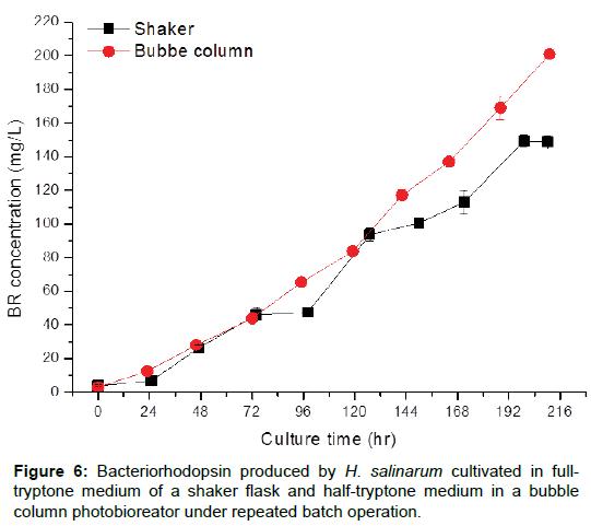 microbial-biochemical-technology-bacteriorhodopsin-shaker-tryptone