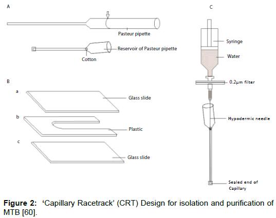 microbial-biochemical-technology-capillary-racetrack-isolation