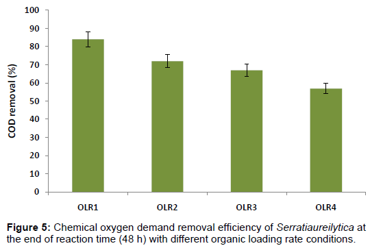 microbial-biochemical-technology-chemical-oxygen-efficiency