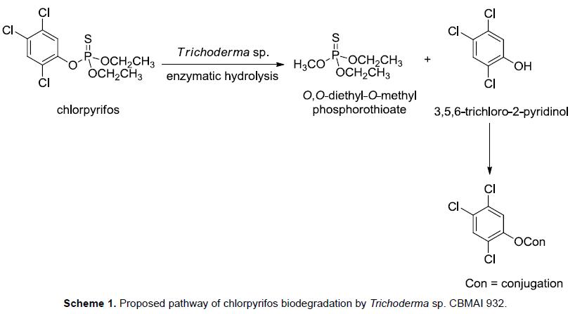 microbial-biochemical-technology-chlorpyrifos-biodegradation