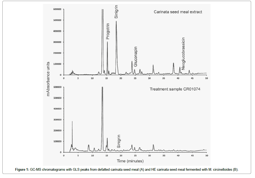 microbial-biochemical-technology-defatted-carinata