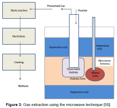 microbial-biochemical-technology-extraction-microwave-technique