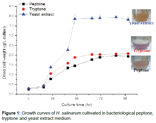 microbial-biochemical-technology-growth-bacteriological-peptone