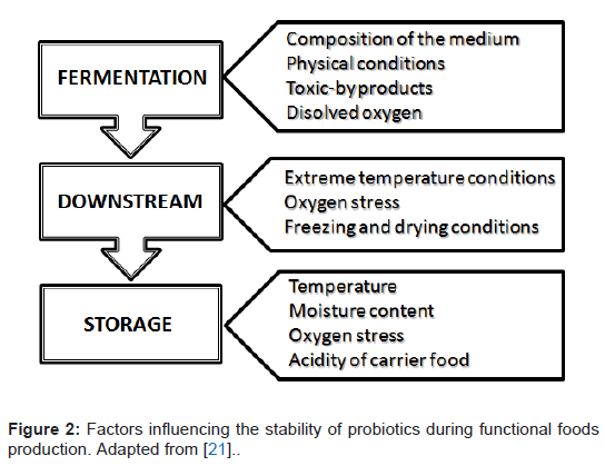 microbial-biochemical-technology-influencing-stability-probiotics