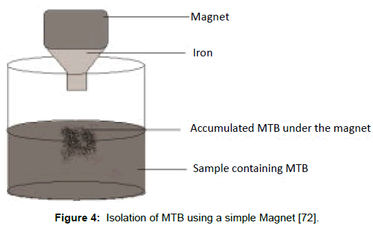 microbial-biochemical-technology-isolation-simple-magnet