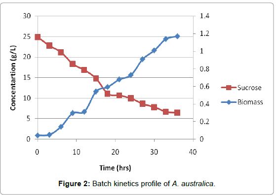 microbial-biochemical-technology-kinetics-profile
