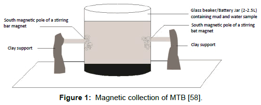 microbial-biochemical-technology-magnetic-collection