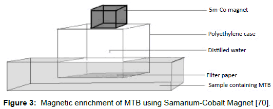 microbial-biochemical-technology-magnetic-enrichment-samarium