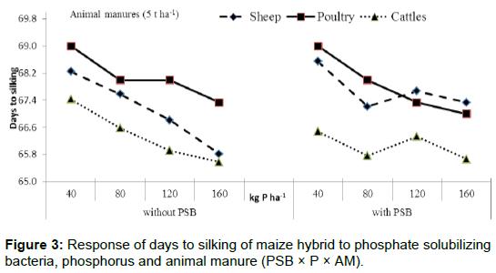 microbial-biochemical-technology-maize-hybrid-phosphate