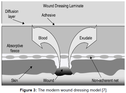 microbial-biochemical-technology-modern-wound-dressing