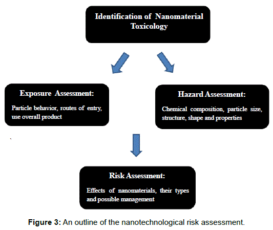 microbial-biochemical-technology-nanotechnological-risk-assessment
