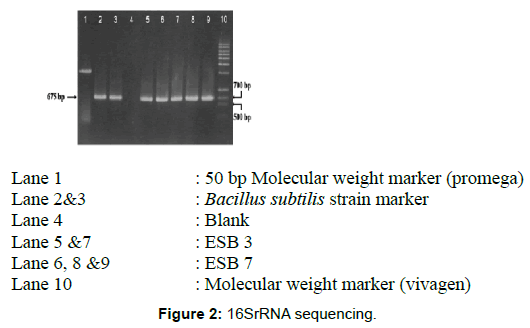 microbial-biochemical-technology-sequencing