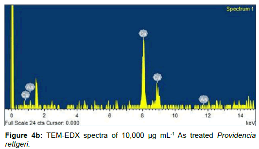 microbial-biochemical-technology-spectra-treated