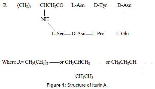 microbial-biochemical-technology-structure-iturin