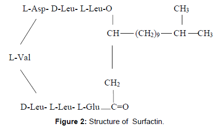 microbial-biochemical-technology-structure-surfactin
