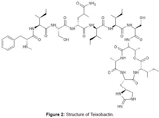 microbial-biochemical-technology-structure-teixobactin