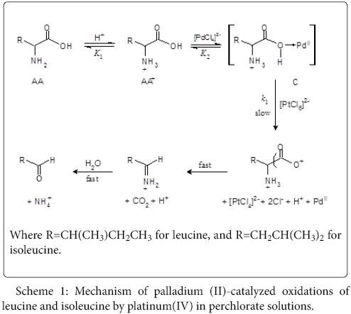 Kinetics And Mechanistic Approach To Palladium Ii Catalyzed