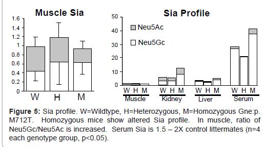 molecular-biology-altered-Sia-profile