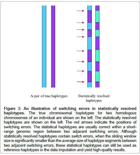molecular-biology-resolved-haplotypes