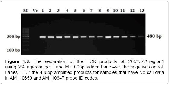molecular-biology-separation-No-call-codes