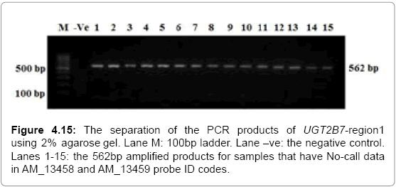 molecular-biology-separation-agarose-probe