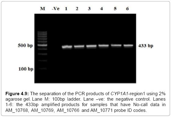 molecular-biology-separation-region1-ladder