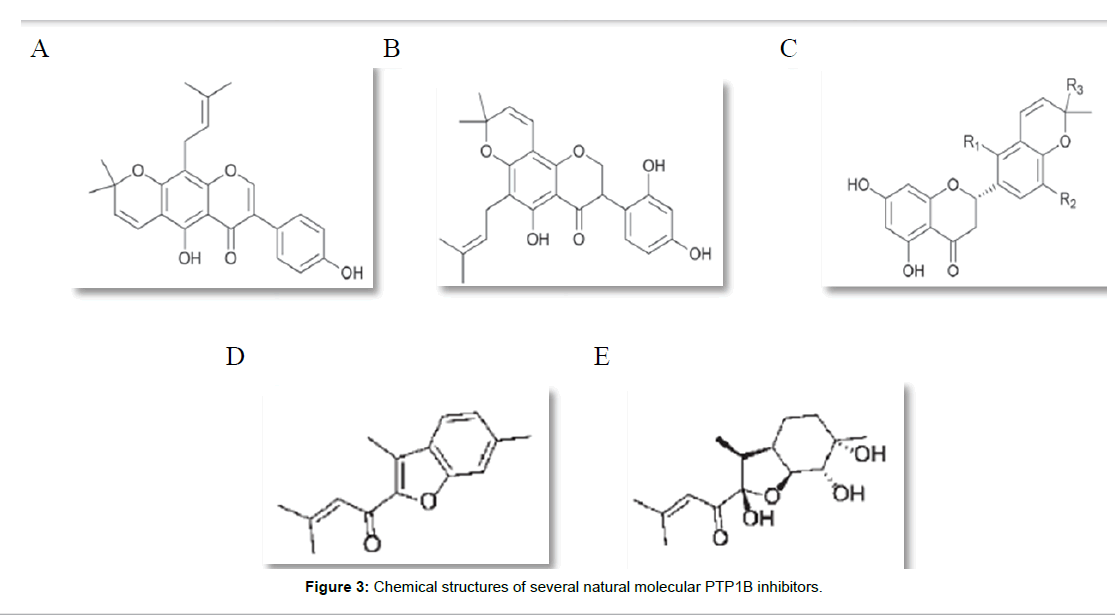 molecular-biology-several-natural