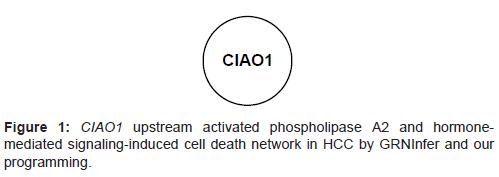 molecular-biology-upstream-activated-phospholipase