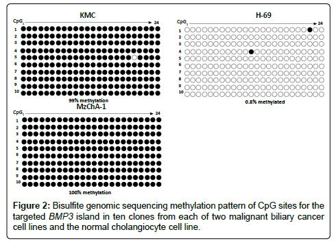molecular-biomarkers-diagnosis-Bisulfite-genomic