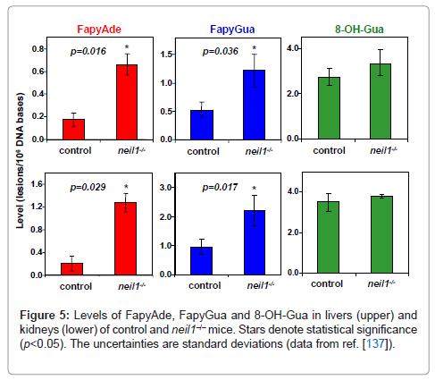 molecular-biomarkers-diagnosis-Levels-FapyAde