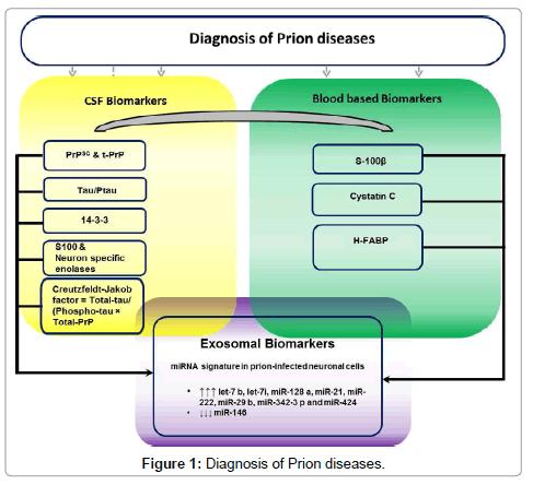 molecular-biomarkers-diagnosis-Prion-diseases