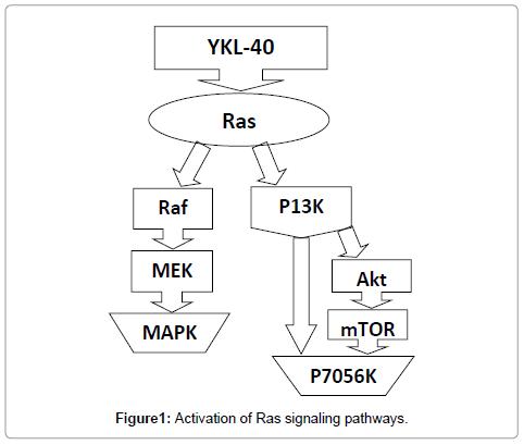 molecular-biomarkers-diagnosis-Ras-signaling