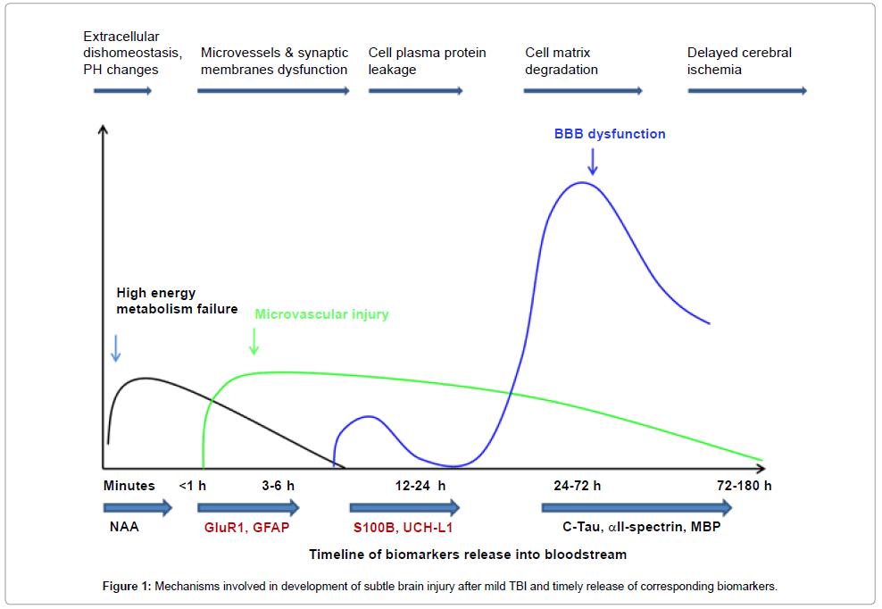 molecular-biomarkers-diagnosis-brain-injury