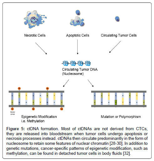 molecular-biomarkers-diagnosis-cancer-specific