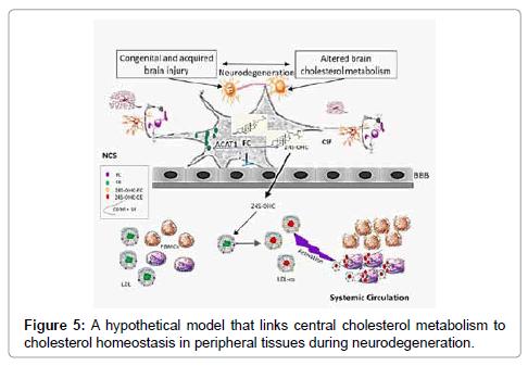 molecular-biomarkers-diagnosis-hypothetical-model