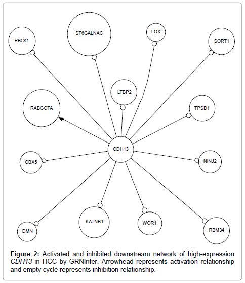 molecular-biomarkers-diagnosis-inhibition-relationship