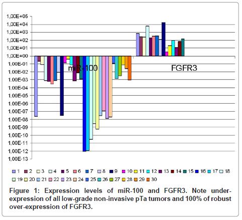 molecular-biomarkers-diagnosis-pTa-tumors