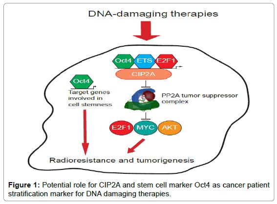 molecular-biomarkers-diagnosis-stratification